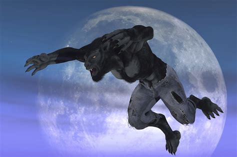 Fans of wolves, werewolves have own event to bite into